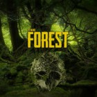 Igra The Forest